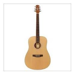 Chitara acustica 4/4 Ashton D20S N